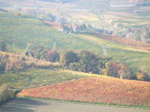 Piemontesische Küche – ein Verrückter –Barolo Magnum