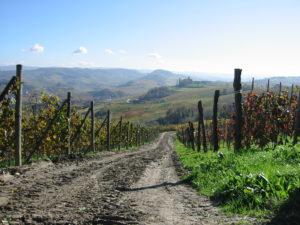 Piemont – ein Paradies für Feinschmecker