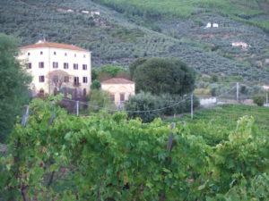 Versicherung für Wohnung in Villa in der Toskana