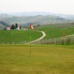 Golf Piemont bei Monforte D´Alba mitten in den Weinbergen