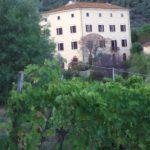 Ein Konto zu eroeffnen in Italien: gar nicht so einfach