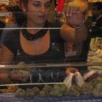 Trüffelmesse 2010 in Alba Piemont beginnt wie immer traditionell am ersten Sonntag im Oktober