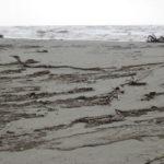 trostloser dreckiger Strand bei Viareggio im Februar