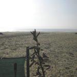 Blick von Strandbar Sergio Forte Dei Marmi