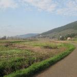 Jogging Strecke in der Toskana