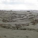 dreckiger Strand in Viareggio im Februar