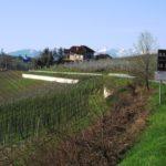 Piemont Tipps fuer den Monat Mai: Barbaresco a Tavola