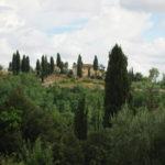 wunderschöne Toskana bei Palaia