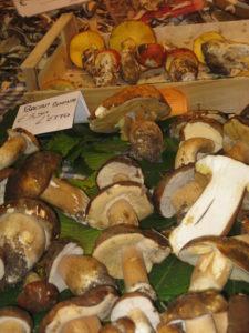 Frische Steinpilz Rezepte aus Italien passend zur Steinpilz Saison