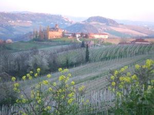 Rezept Tajarin Nudeln al Ragu aus dem Piemont