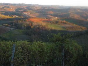 Abendstimmung Piemont Langhe Tal