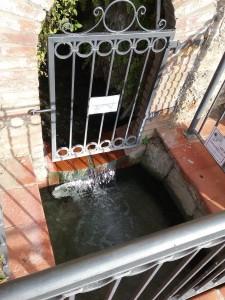 Termalwasser Quellen Calidario Terme Toskana